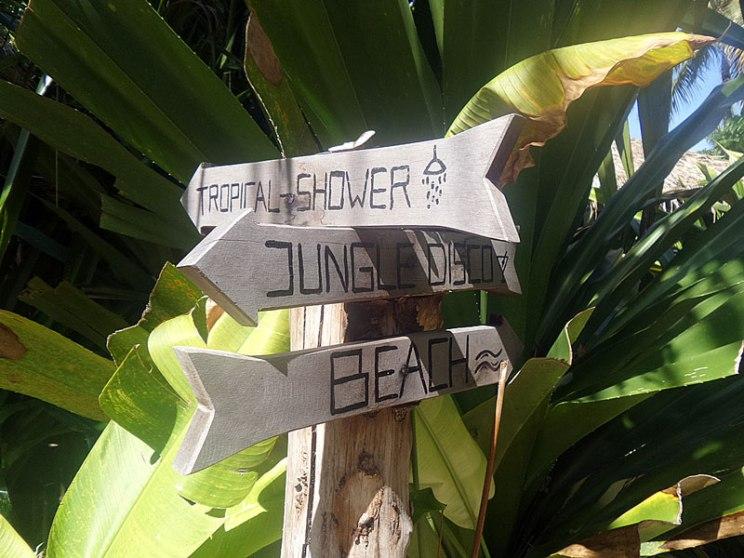 Ano kaya ang ganap sa jungle disco?