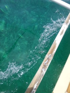 From the dock, we had to ride a bangka going to the surf spot. The bangka left us there for two hours to surf.
