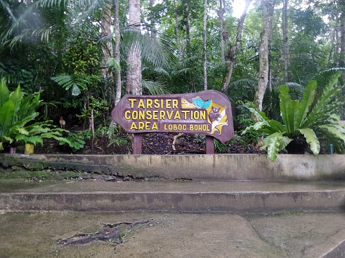 First stop of the city tour was at the Tarsier Conservation Area