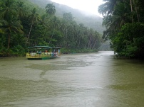 We had lunch on a moving raft along the Loboc river